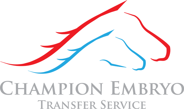 Champion Embryo Transfer Service